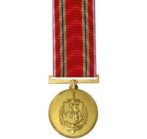 Medalj bröstband